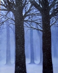 'Narnia'- Dawn Waters Baker  $1000.00