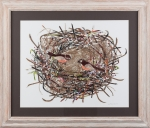 Nesting- Lee and Carol Bowman